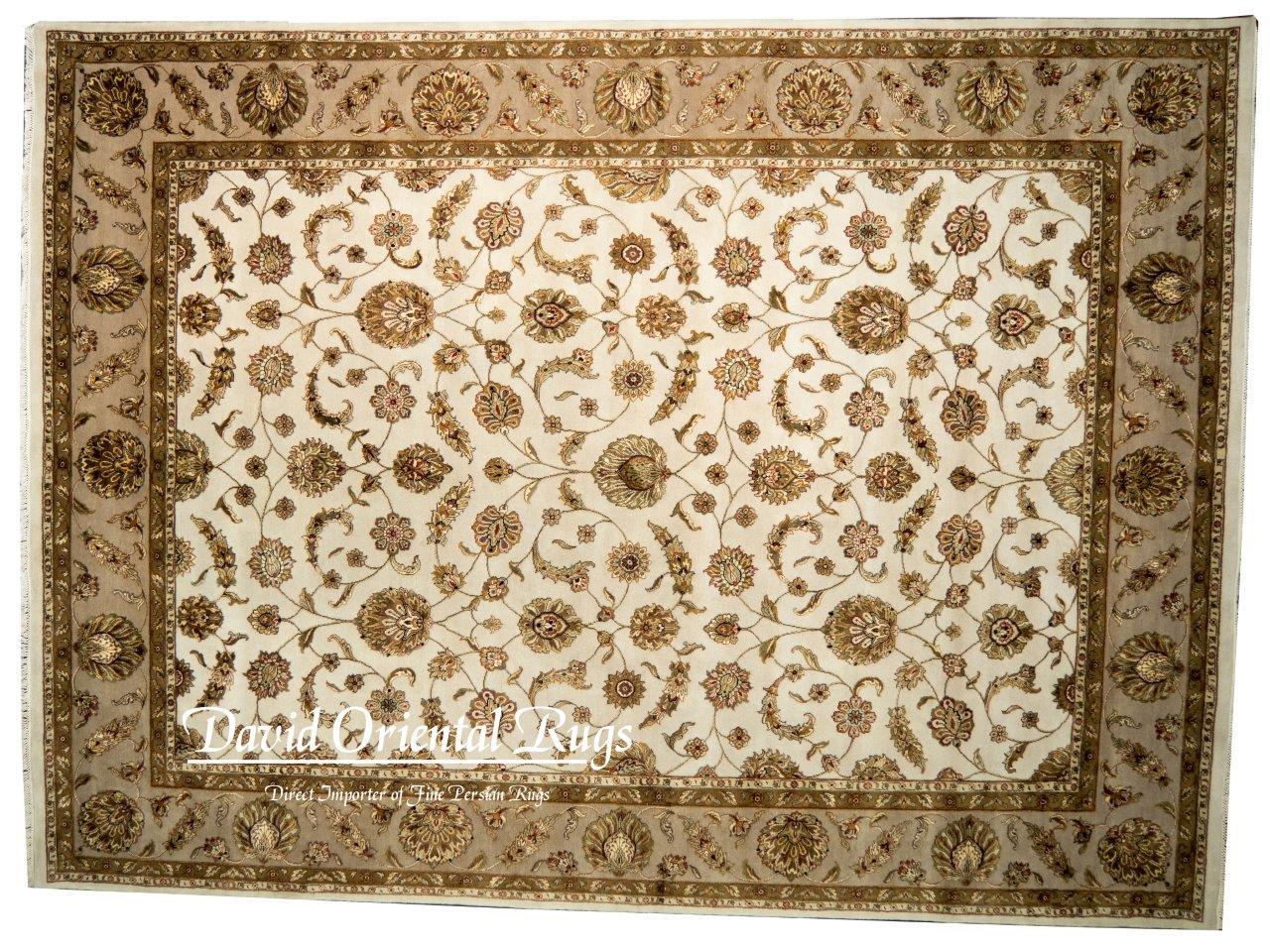 9×12 Jaipur Rug 94N1-16145