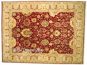 9×12 Jaipur Rug 94N1-5091